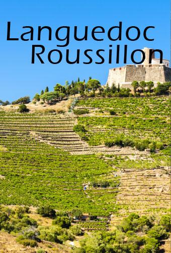 Vignoble Languedoc Roussillon