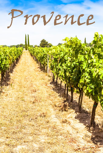 Vignoble Provence