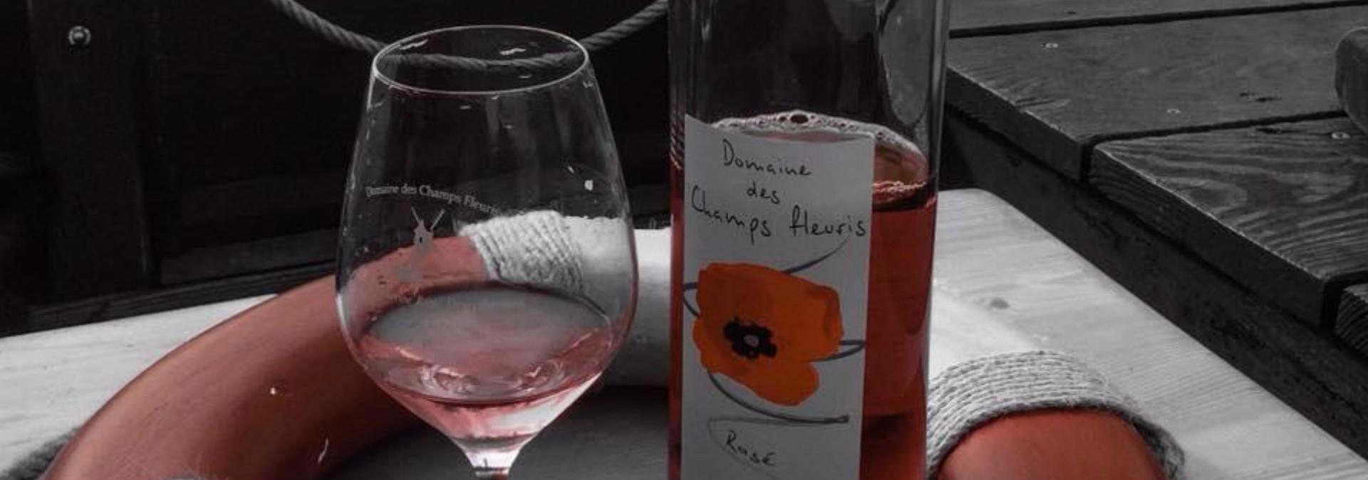 Loire vins aventure