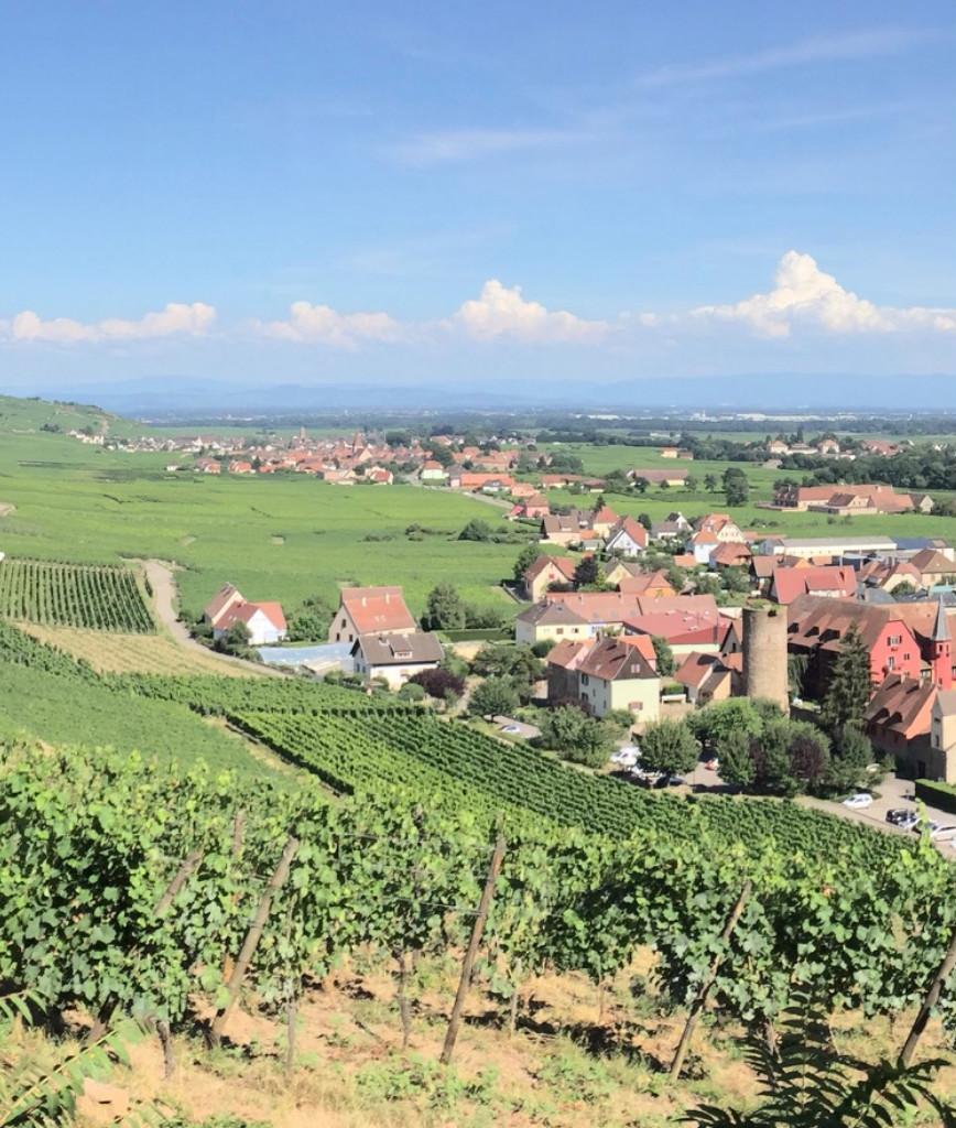 Alsace Original Experiences : les 4 merveilles d'Alsace