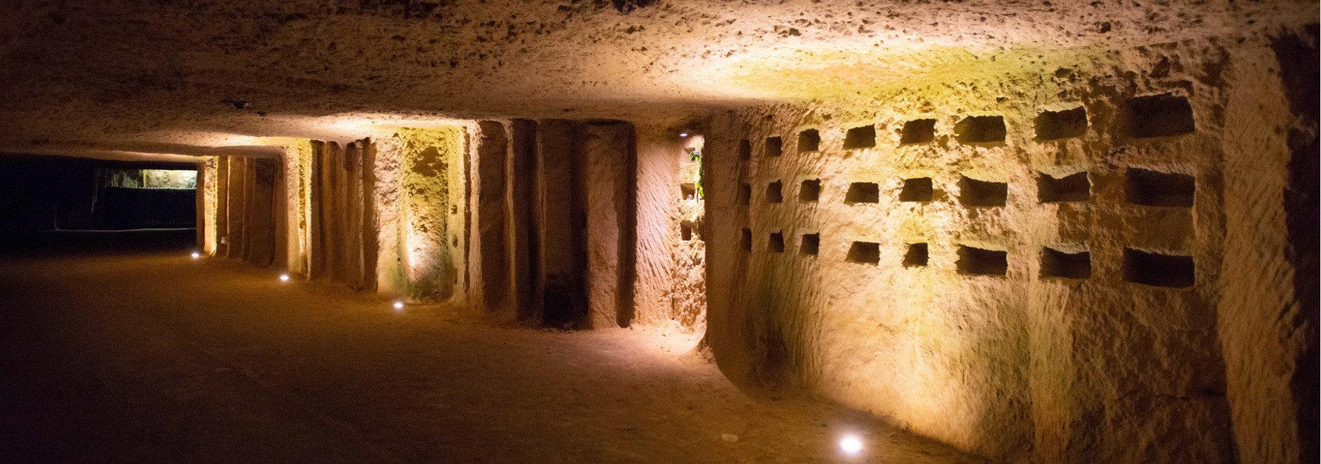 Blanc Foussy- Grandes caves saint roch