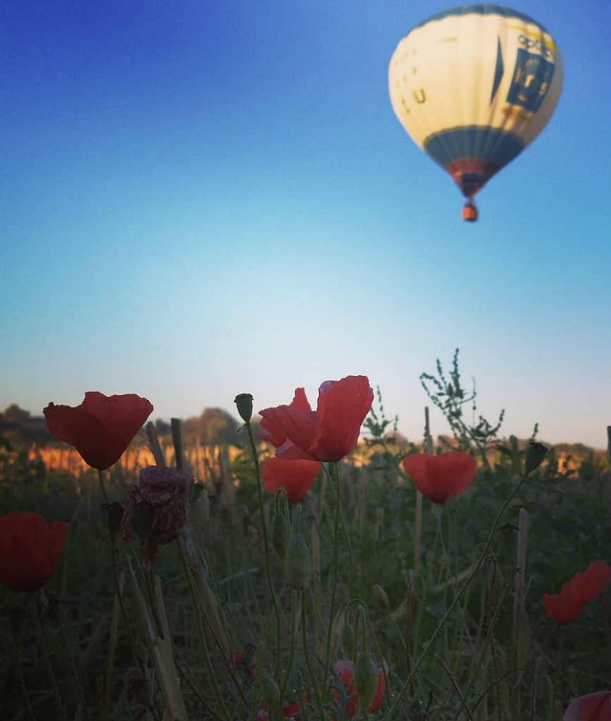 Champagne Cuillier : vol en montgolfière