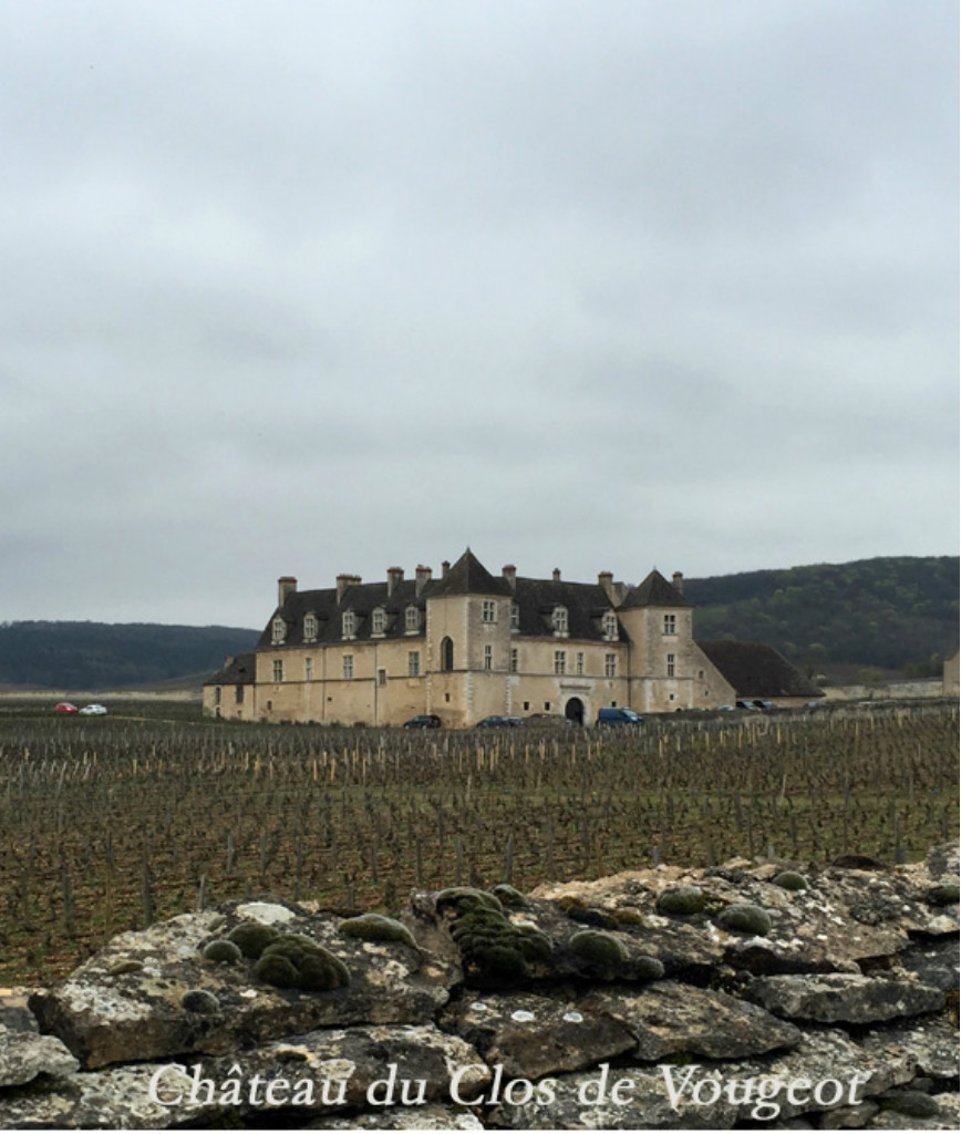 Grape & Galleries : La Bourgogne depuis Paris