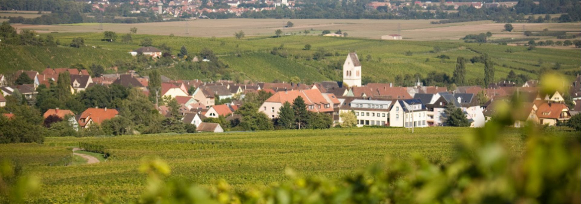 Domaine Berger