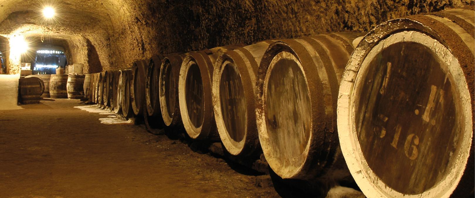 Comment est fait la production du Vin Rouge - Oenotourisme