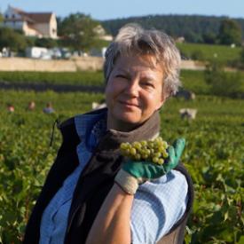 Karoline Knoth - La Bourgogne est à vos pieds