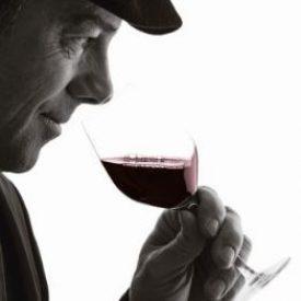 Plaimont, vignerons en Gascogne et Piémont Pyrénéen