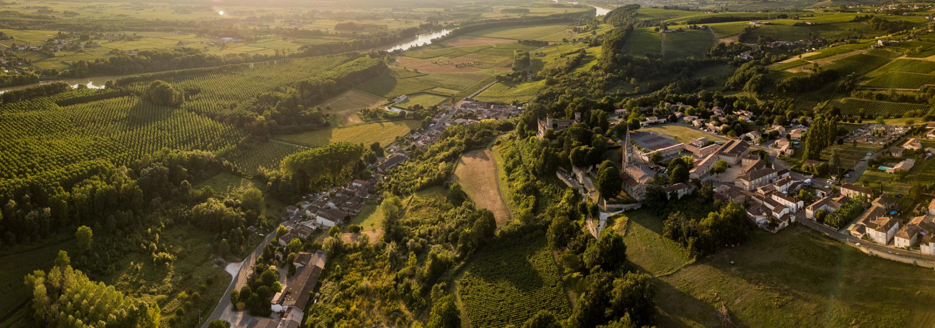 Château Bel Air – Vignobles Méric