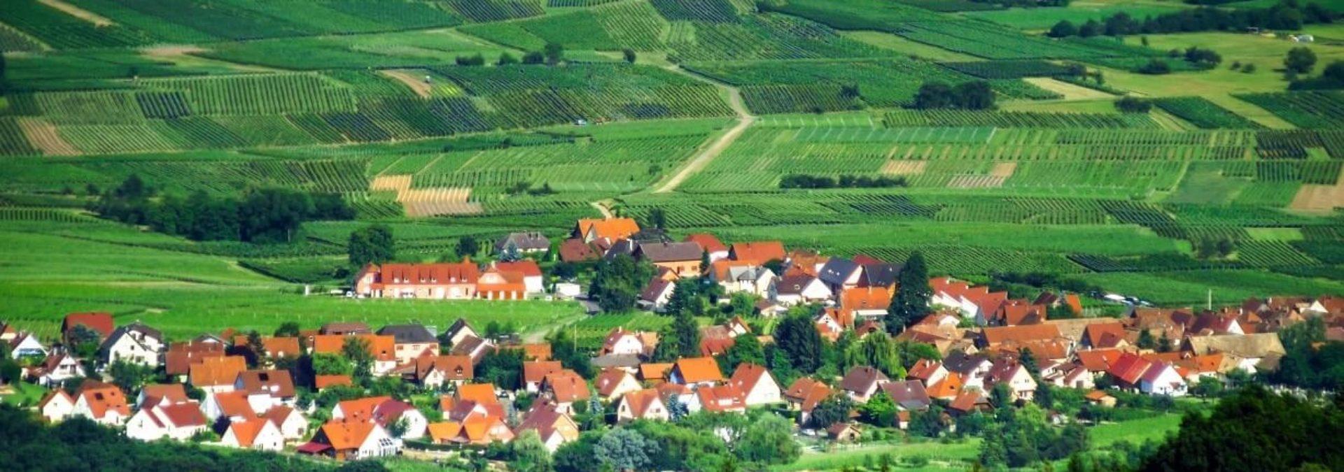 Domaine Fritz-Schmitt