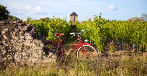 les-vignes-à-vélo