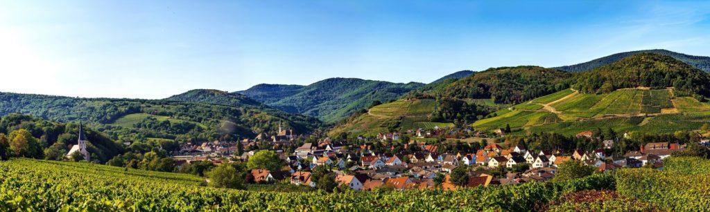 Vignes et vue panoramique sur Andlau