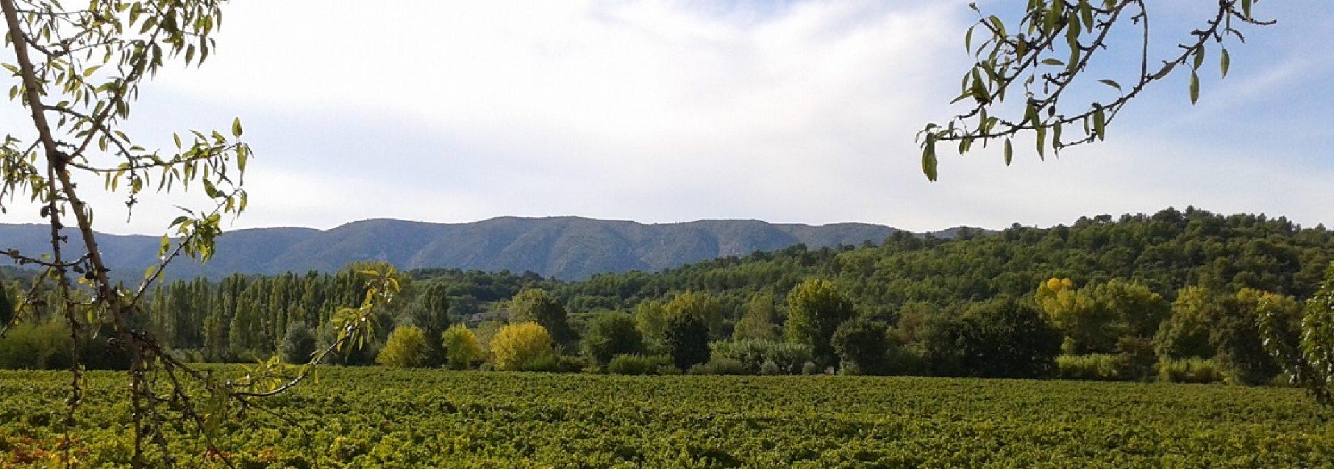 Domaine La Garelle